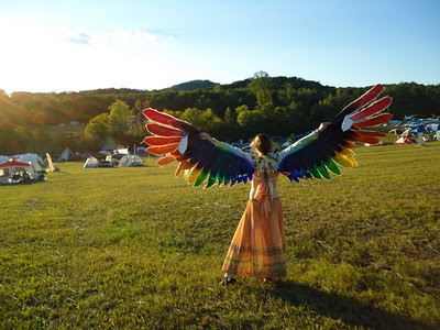 Phoenix-Wings001.jpg
