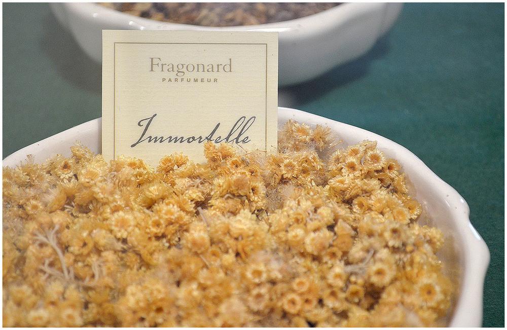 Parfumerie Fragonard in Grasse.jpg