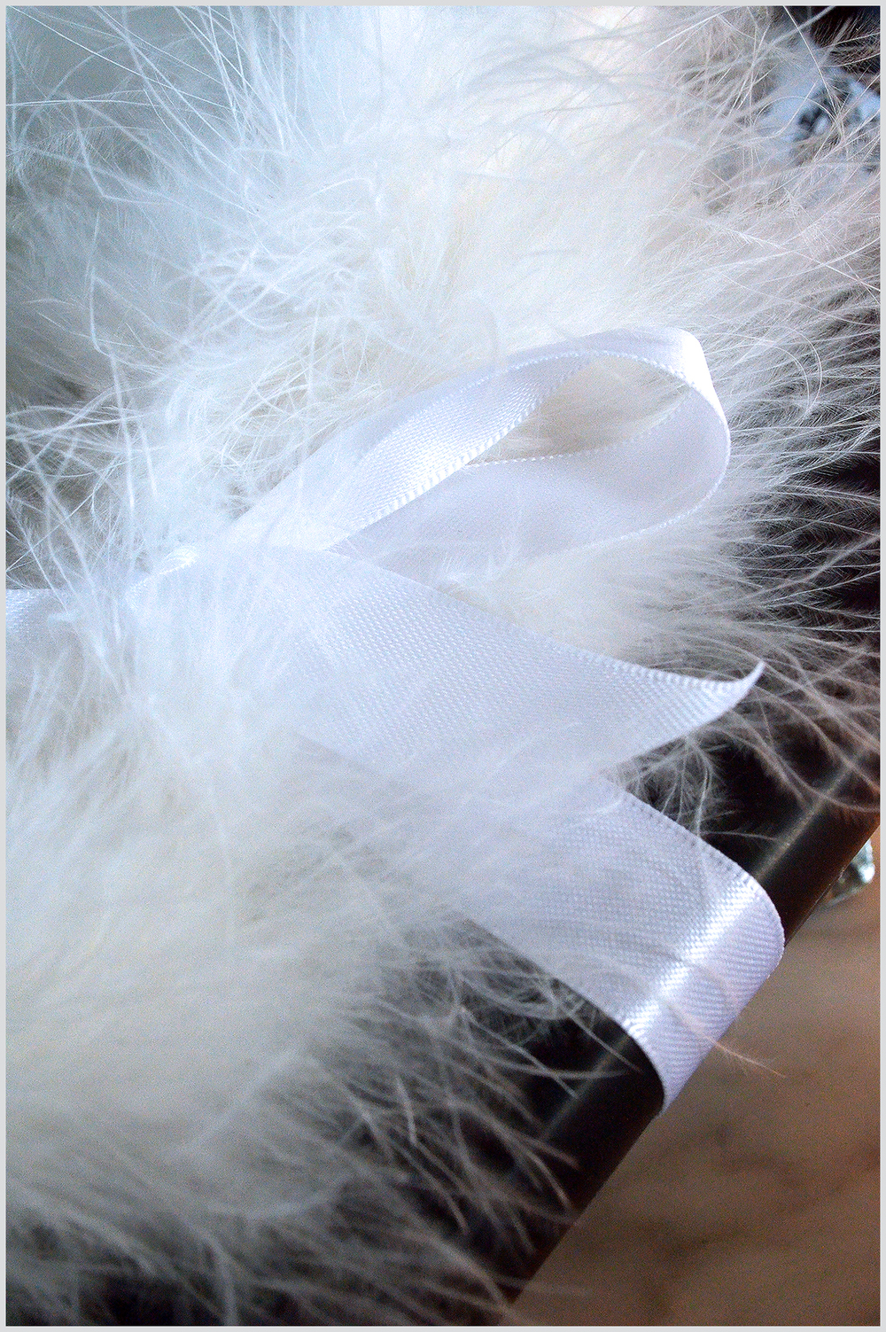 Feathers and Bow