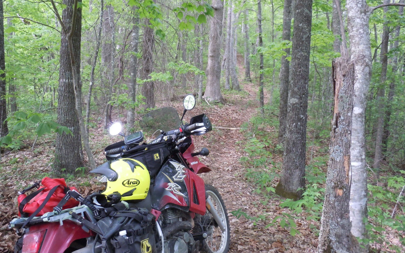 KLR650 on the single track!