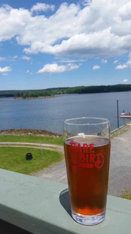 View From The Deck at Rare Bird Pub
