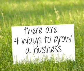 Did you know there are    4 Ways to Grow a Business ?
