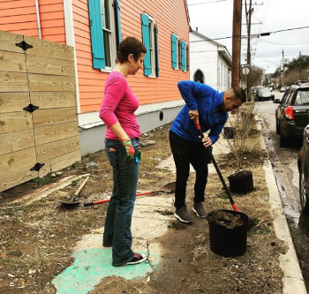 ninth ward nursery and treeme in the treme.png