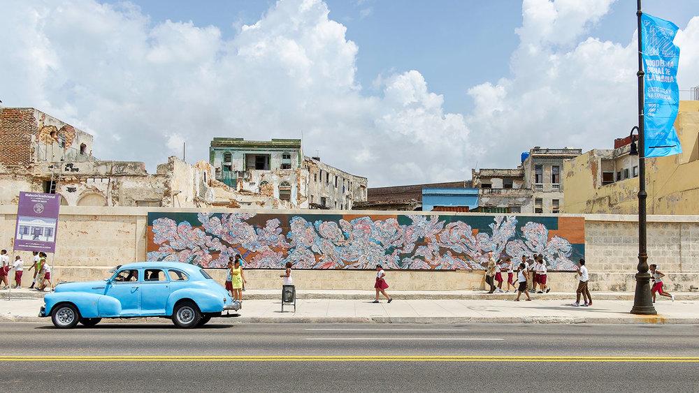 Un Verso Sencillo (A Simple Verse), 2015   Detras del Muro II, 12th Havana Biennial  Havana, Cuba