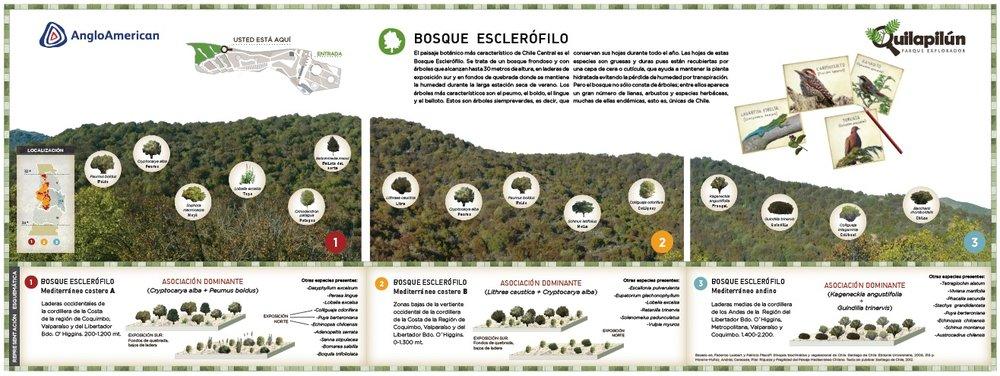 Quilapilun 8.jpg