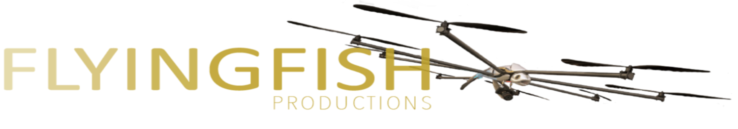 FLYINGFISH PRODUCTIONS