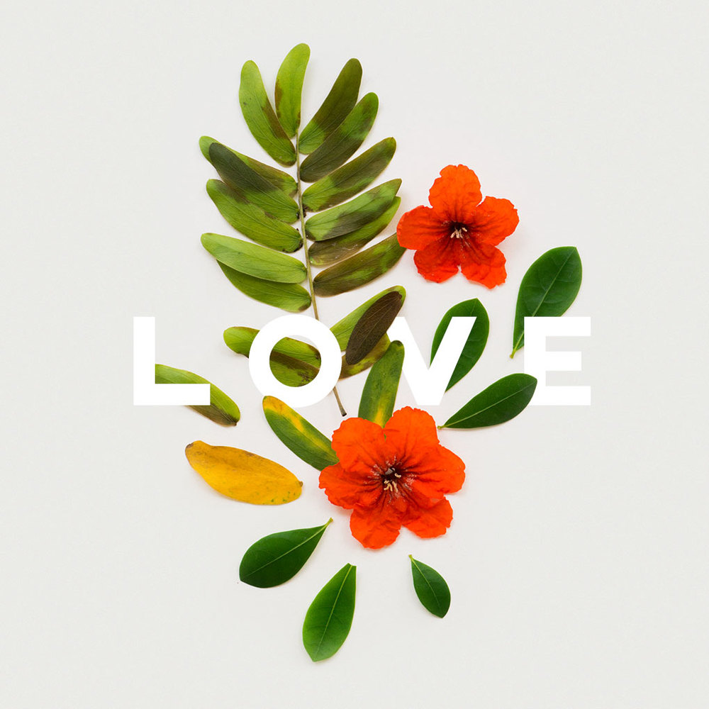 download (1).jpeg
