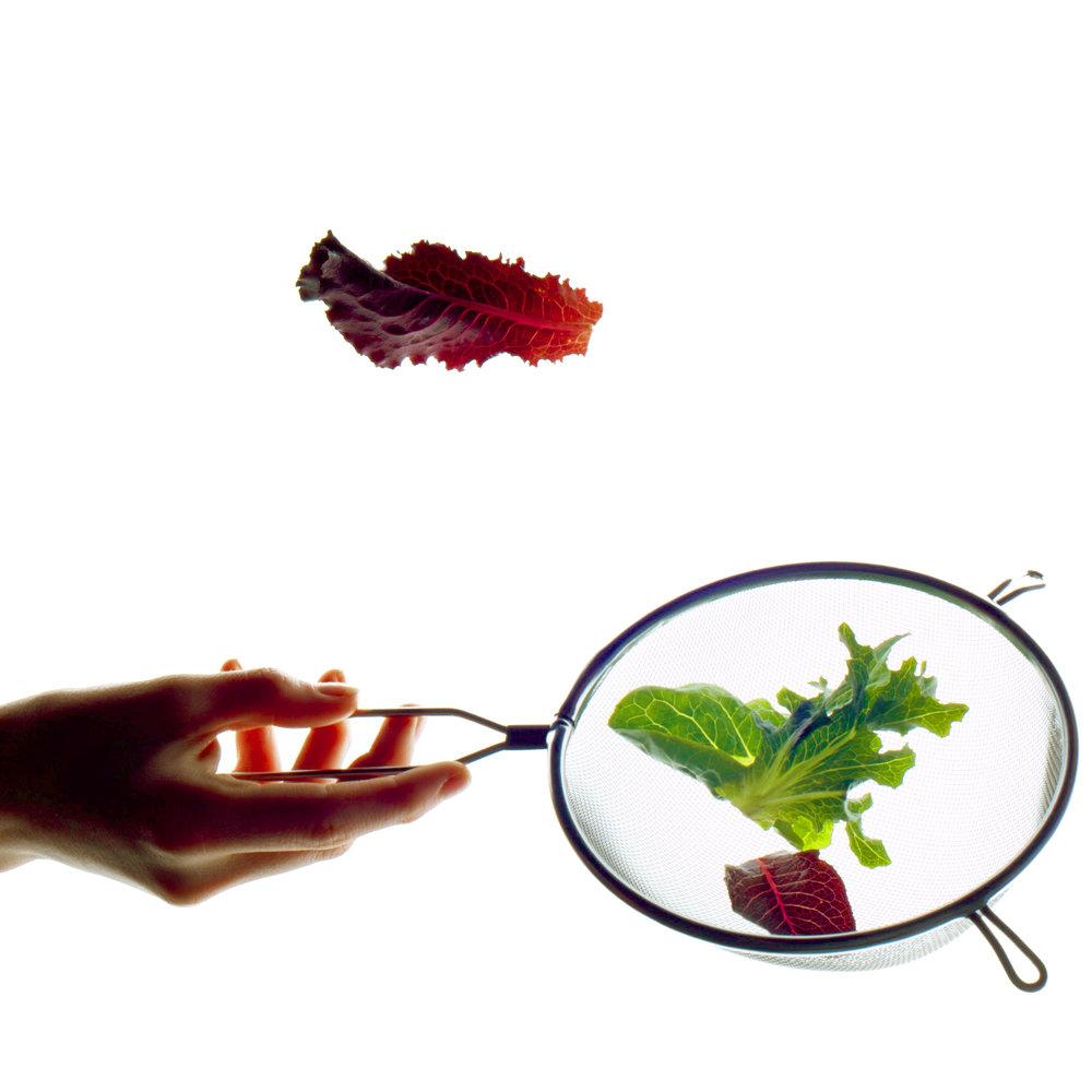 160804_FoodServicePoster_tests1600-2.jpg