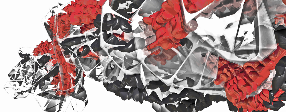 fly reaction, flori kryethi, cca, 2012