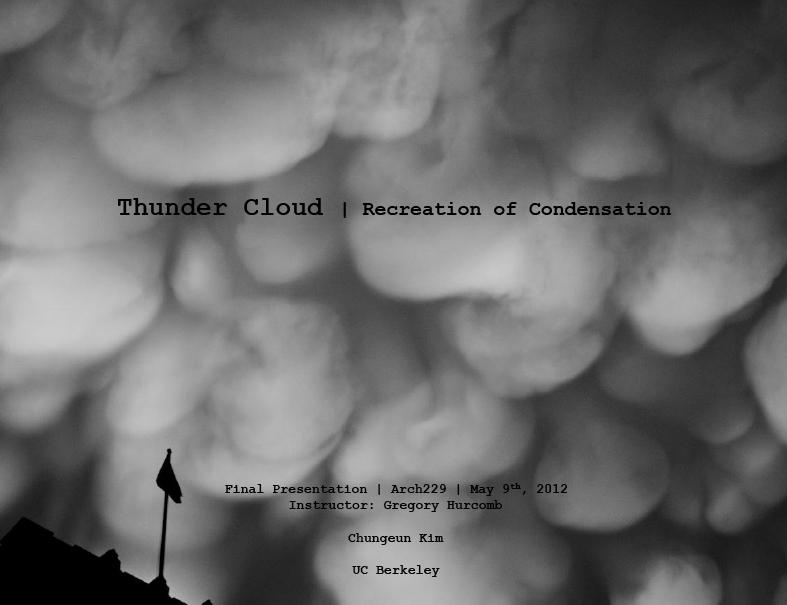 Thundercloud, Chungeun Kim