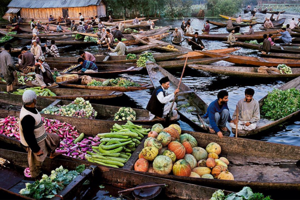 A shot of shikaras on Dal Lake. (by Steve McCurry)