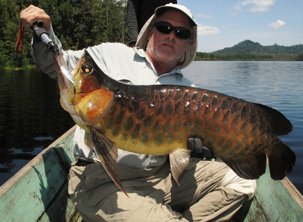 Arowana - Rob Clarke - 130 cm 6 kg B.jpg