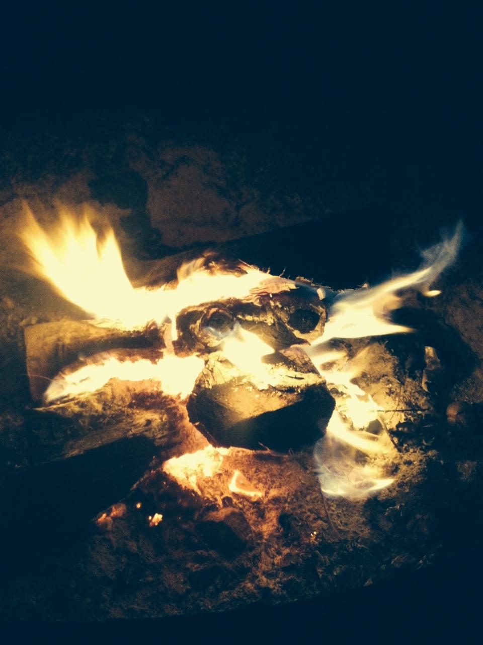 Birthday campfire
