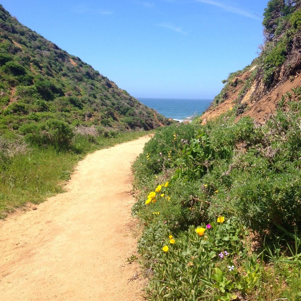 McClure Beach trail