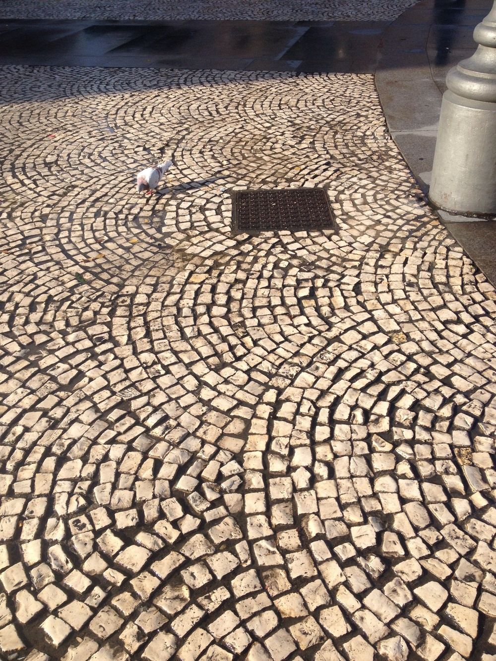 Ah, the pattern of these stones in the plaza near my house are mesmerizing.