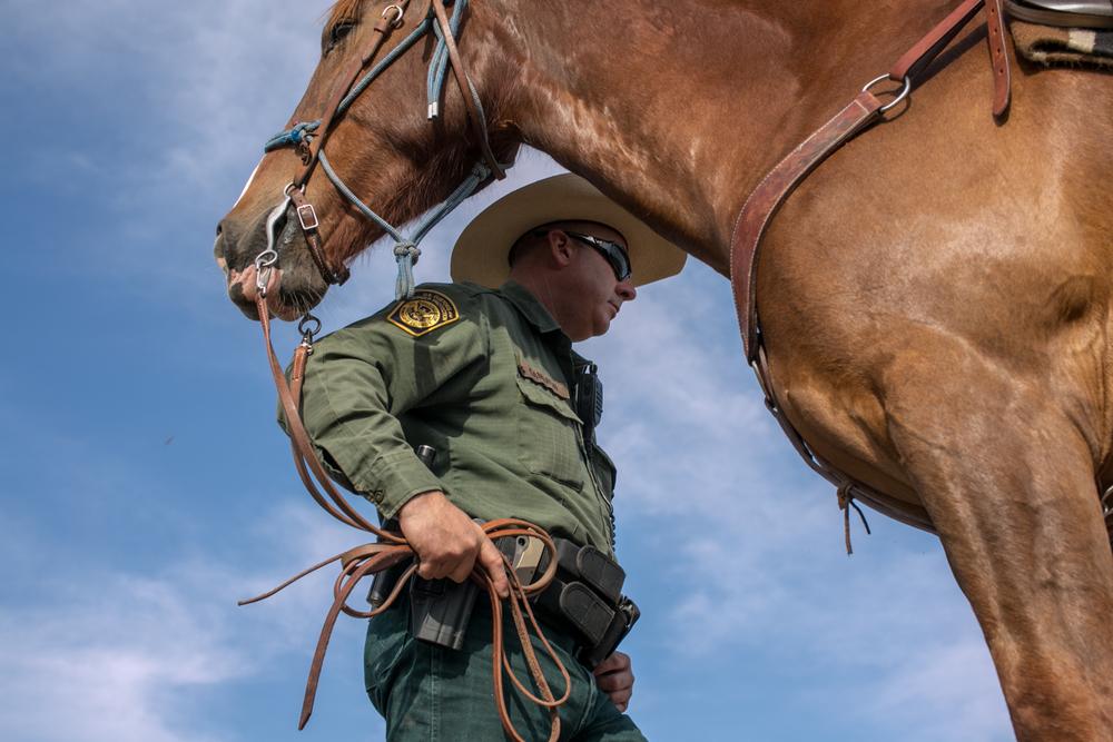 AZ-Horse Pitch-2-2.jpg