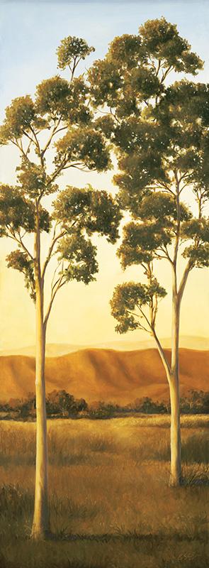 Lonely Eucalyptus II