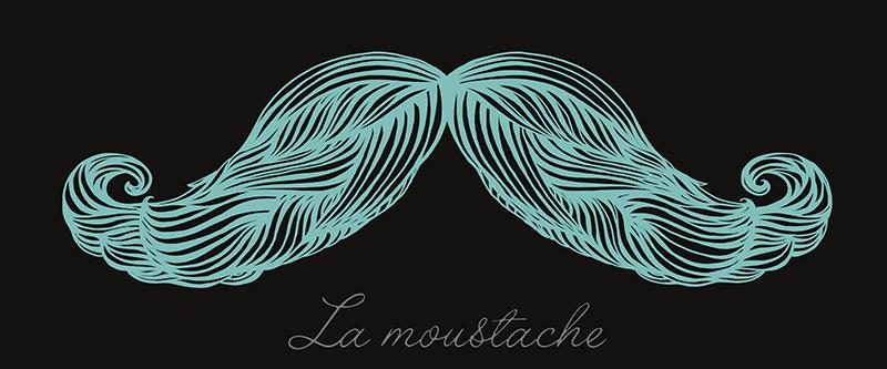 La Moustache Bleu.jpg
