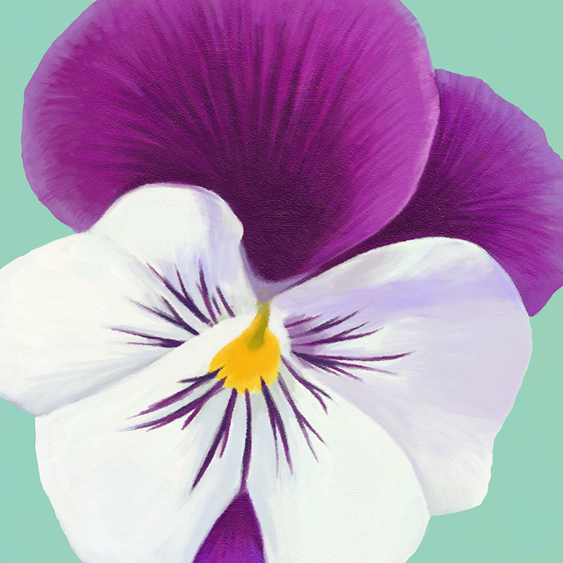 CSteffen-Flower-Art-02.jpg