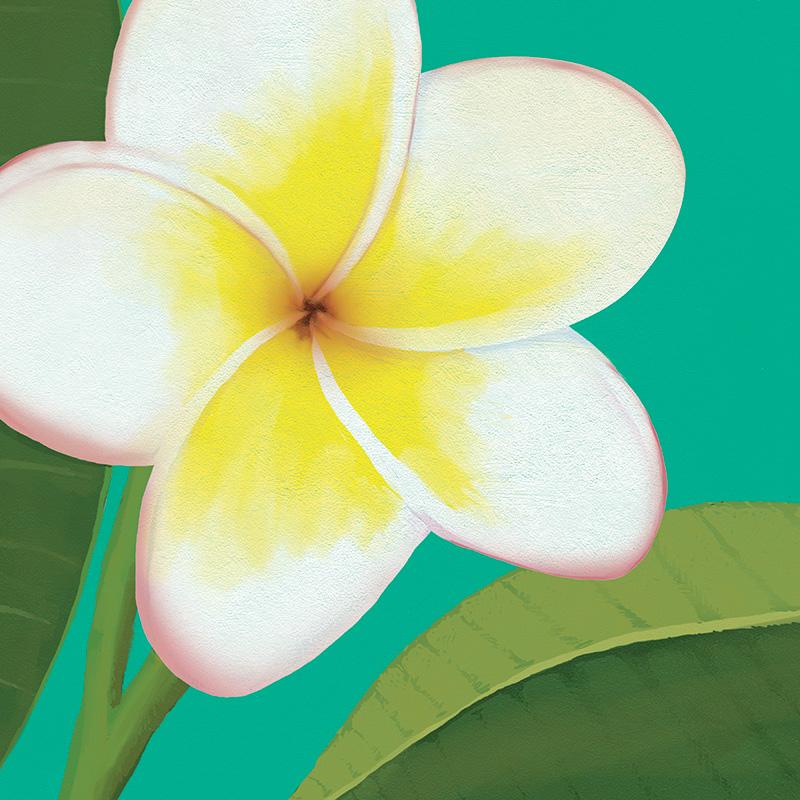 CSteffen-Flower-Art-05.jpg