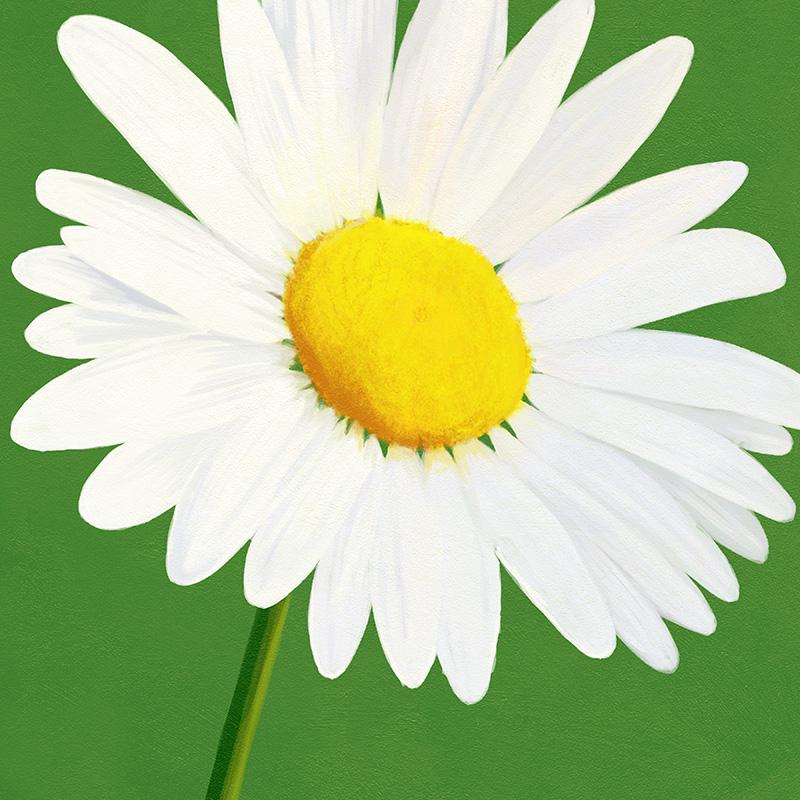CSteffen-Flower-Art-08.jpg