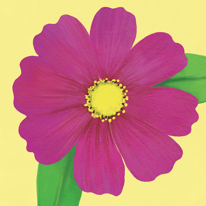 CSteffen-Flower-Art-11.jpg