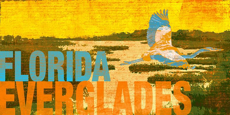CSteffen_Everglades I.jpg