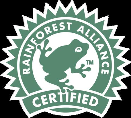 Program Officer at Rainforest Alliance