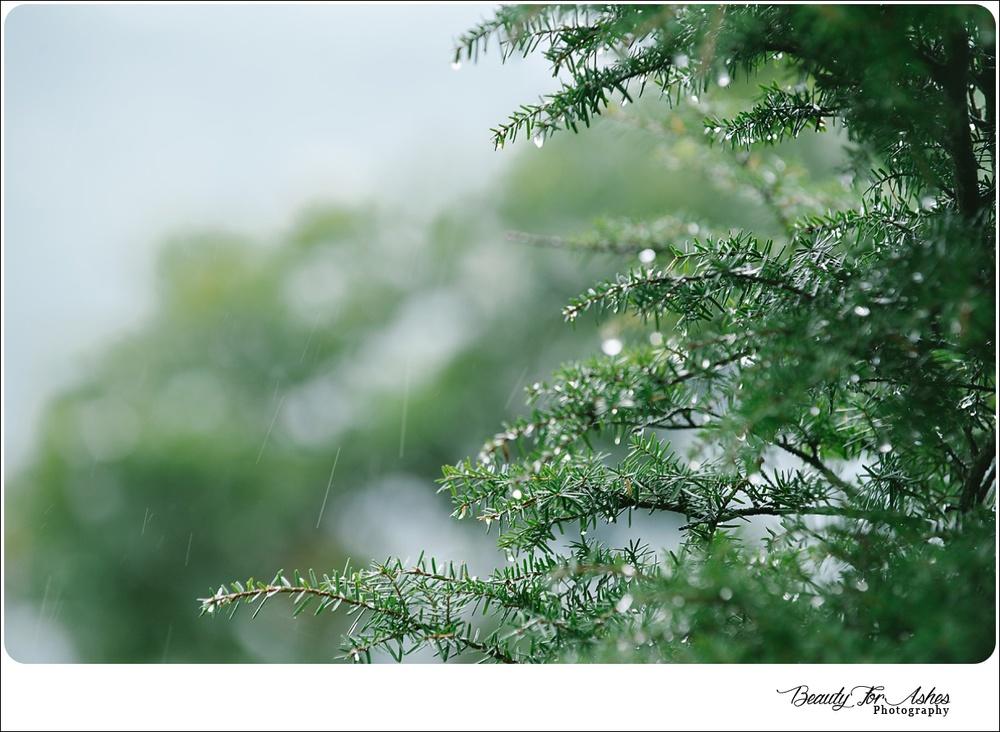 2014-09-27_0014.jpg