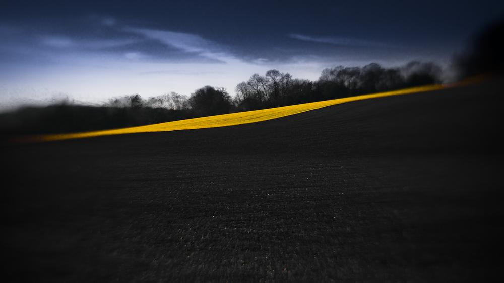 Landscapes-19.jpg