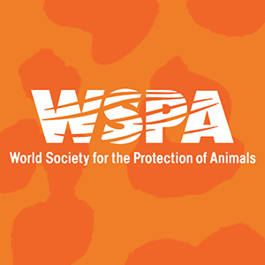 World Society for the Protection of Animals Charity Donation
