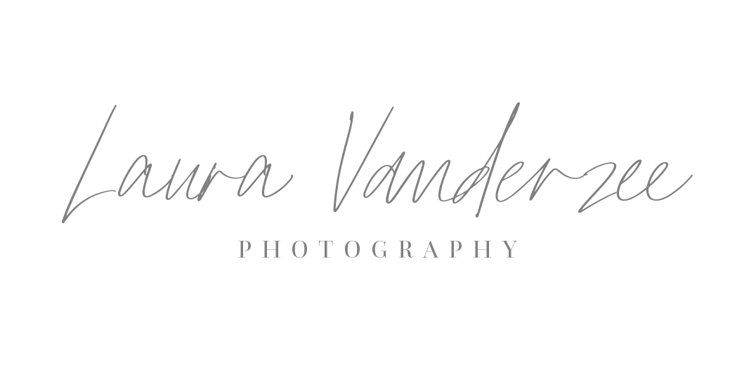 laura vanderzee photography