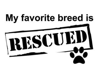 rescued.jpg