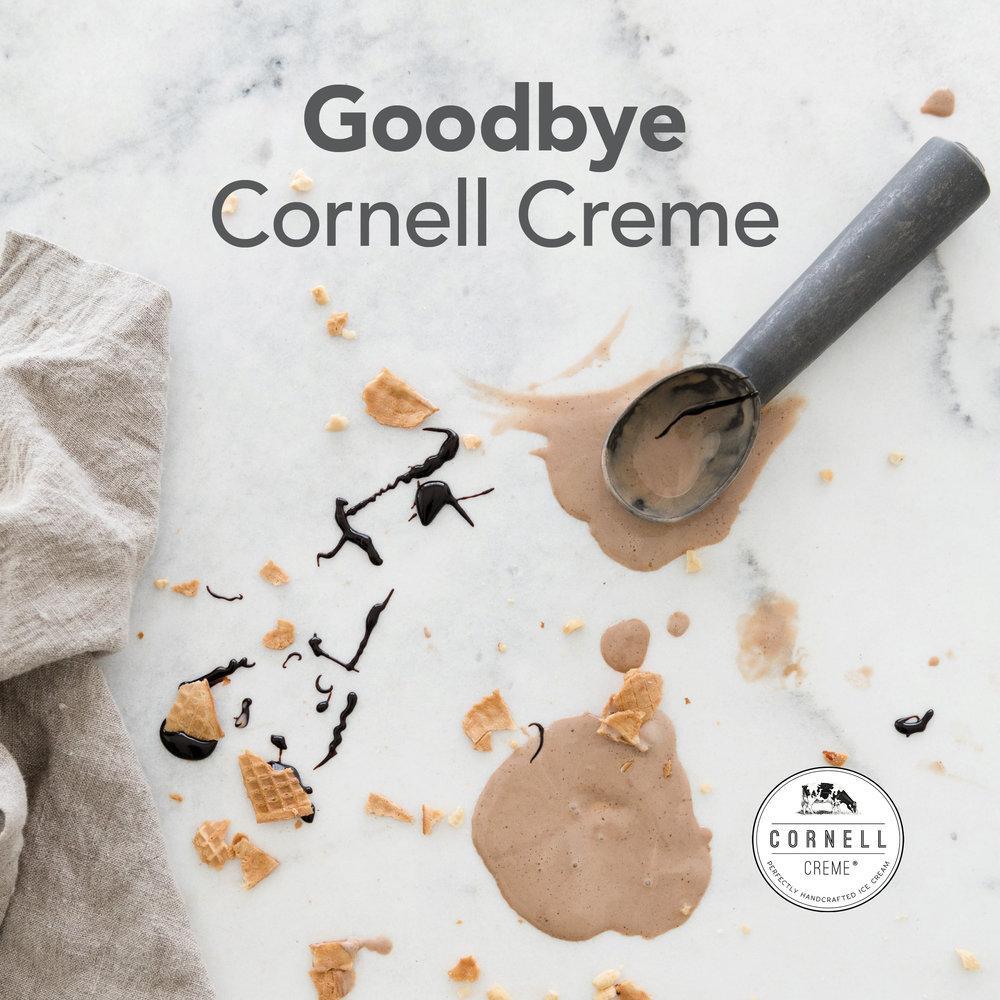 Cornell_Goodbye_pic.jpg