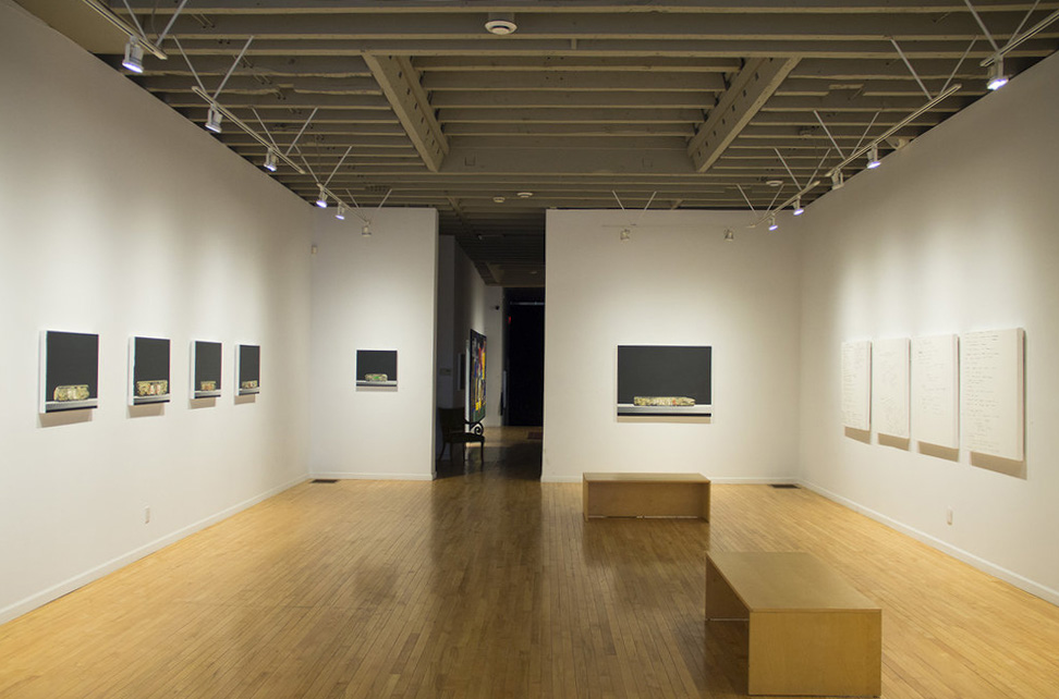 Certain Objects, installation view (2016)