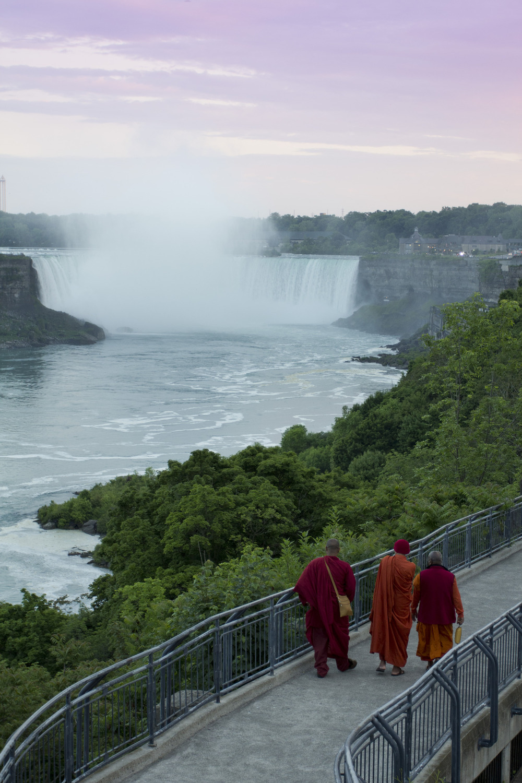 Cheeky Monk-eys - Niagara Falls, Canada