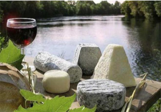 ost og vin.png