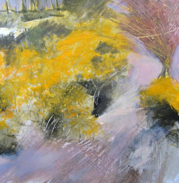 Study For Gorse at Bell Tor