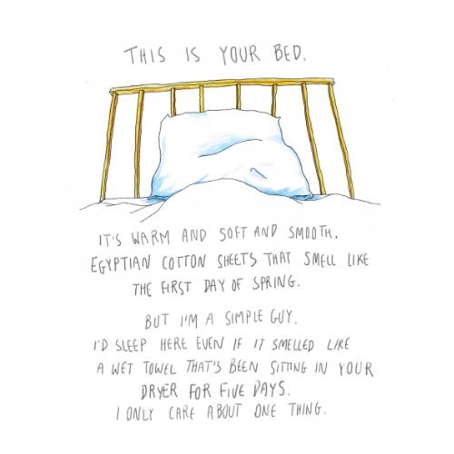 bed bugs_book_2.jpg