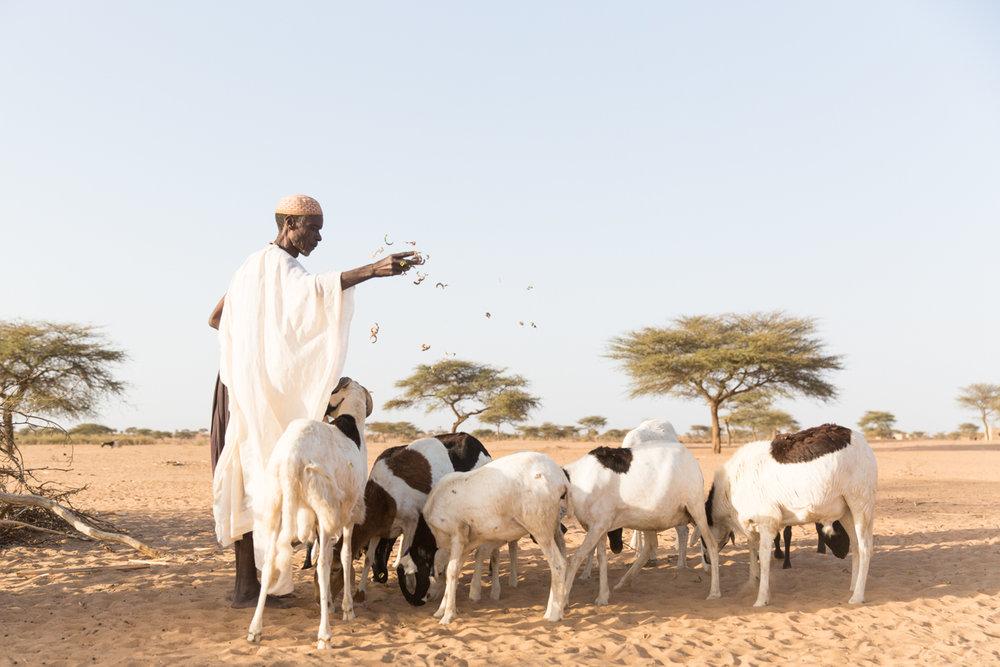GRybus-WM-Climate-Senegal-2495.jpg