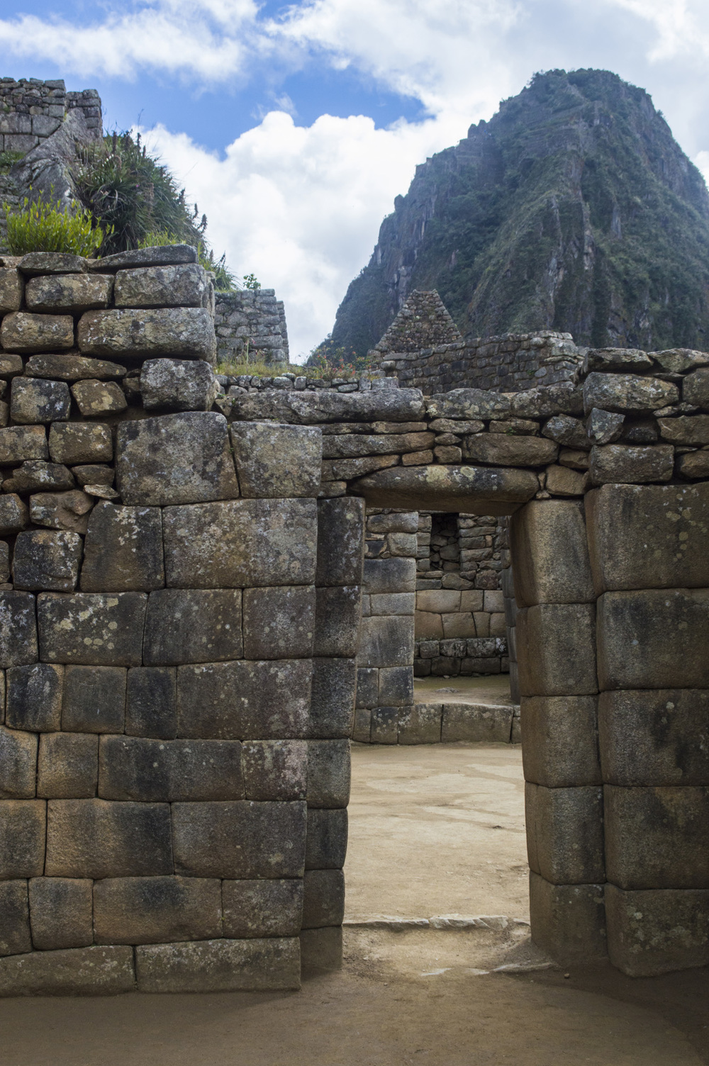 Inca 5 MP doors thru doors and WP.jpg