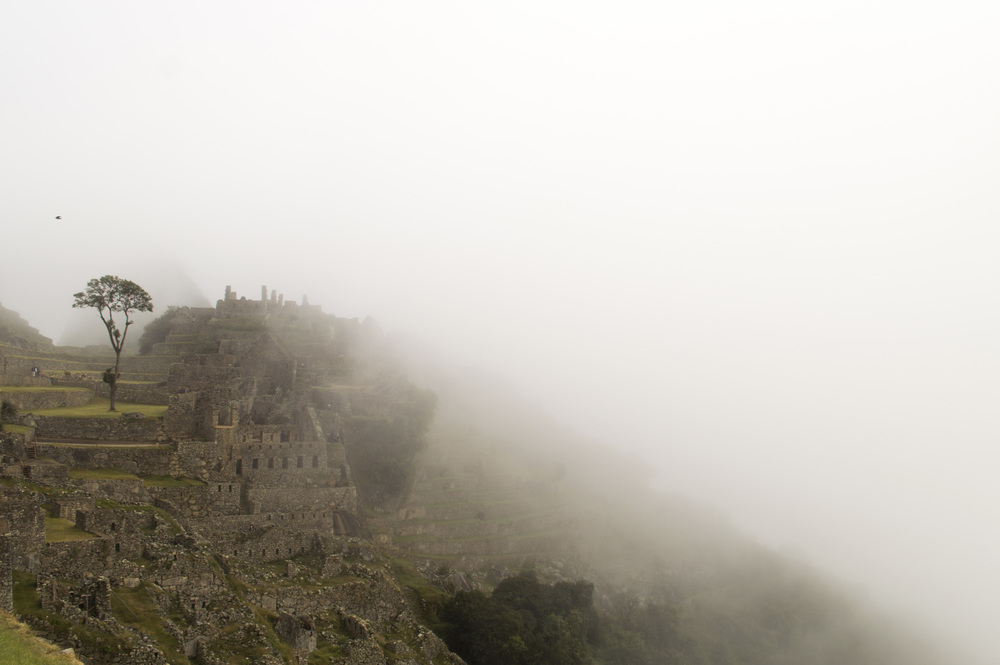 Inca 5 MP fog.jpg