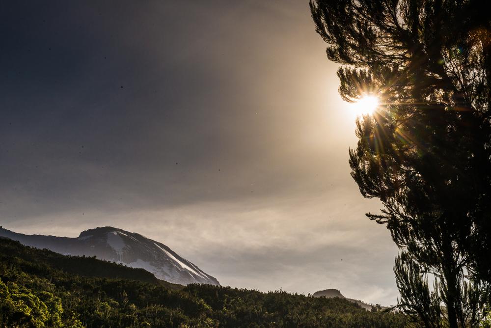Kilimanjaro Peak