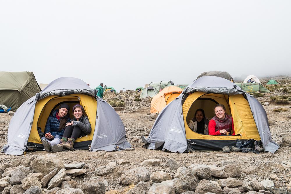 Kilimanjaro Hike Camp