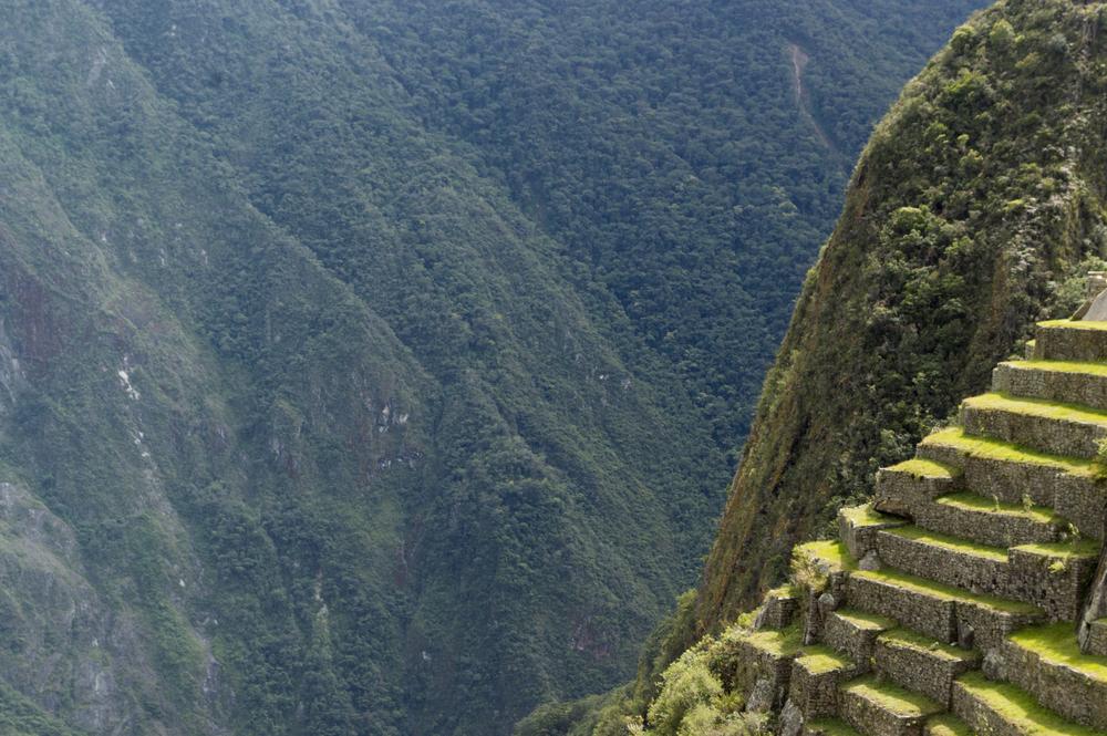 Inca 5 MP terraces.jpg