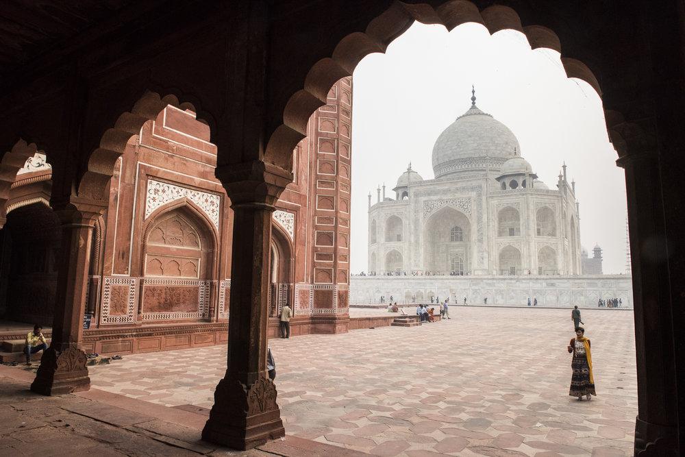WHOA India 2016 - Photo credit Nicola Bailey - 832.jpg