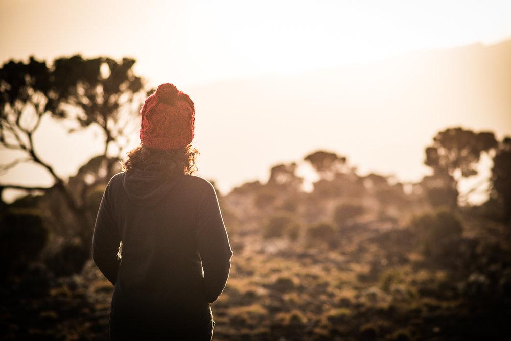 Kilimanjaro__0NB9515_Photo credit Nicola Bailey.jpg