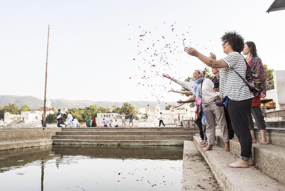 WHOA India 2016 - Photo credit Nicola Bailey - 252.jpg