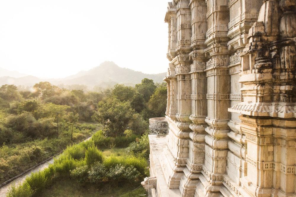 WHOA India 2016 - Photo credit Nicola Bailey - 638.jpg