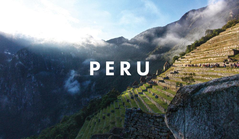PERU with WHOA.jpg